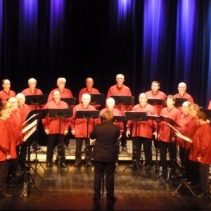 concert-inauguration-Raon-le-16-01-2014-044-800x554